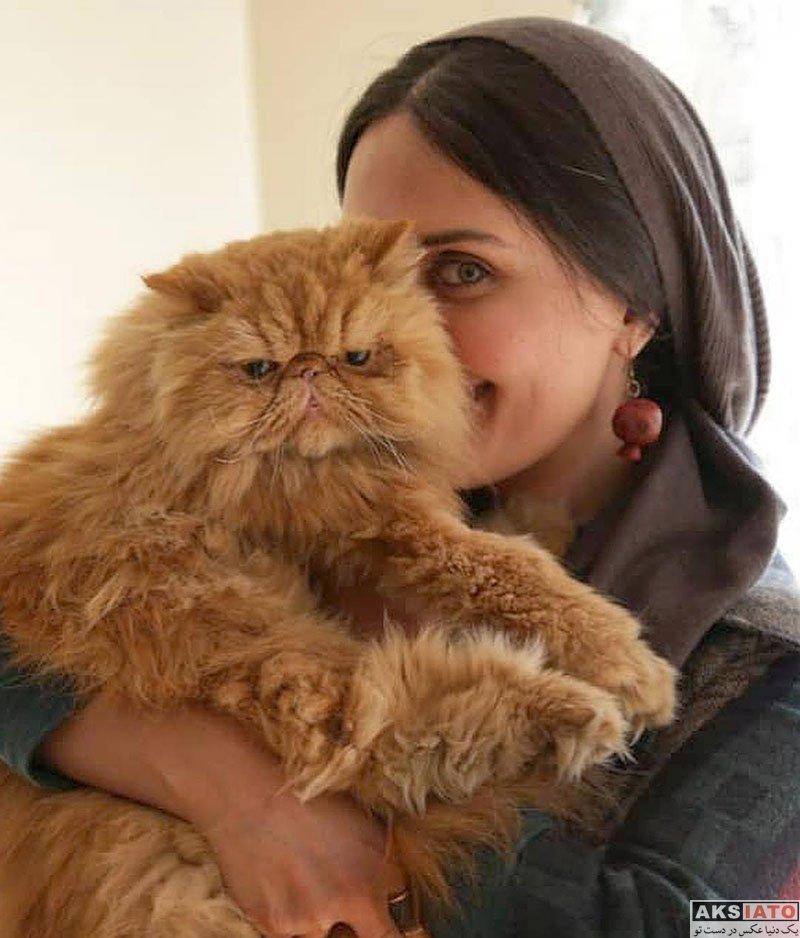 بازیگران بازیگران زن ایرانی  الناز شاکردوست بهمراه گربه ملوسش (3 عکس)