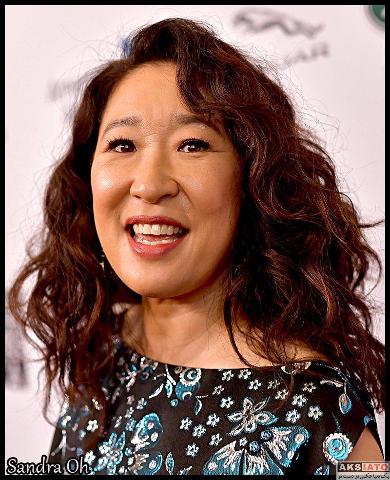 بازیگران بازیگران زن خارجی  ساندرا اوه Sandra Oh (6 عکس)